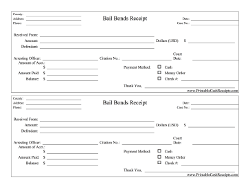 Bail Bonds Receipts cash receipt