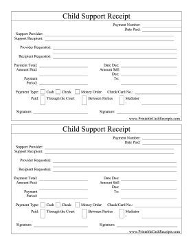 Child Support Receipt cash receipt